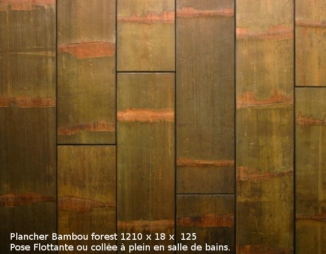 Bambou Forest Isol Naturel